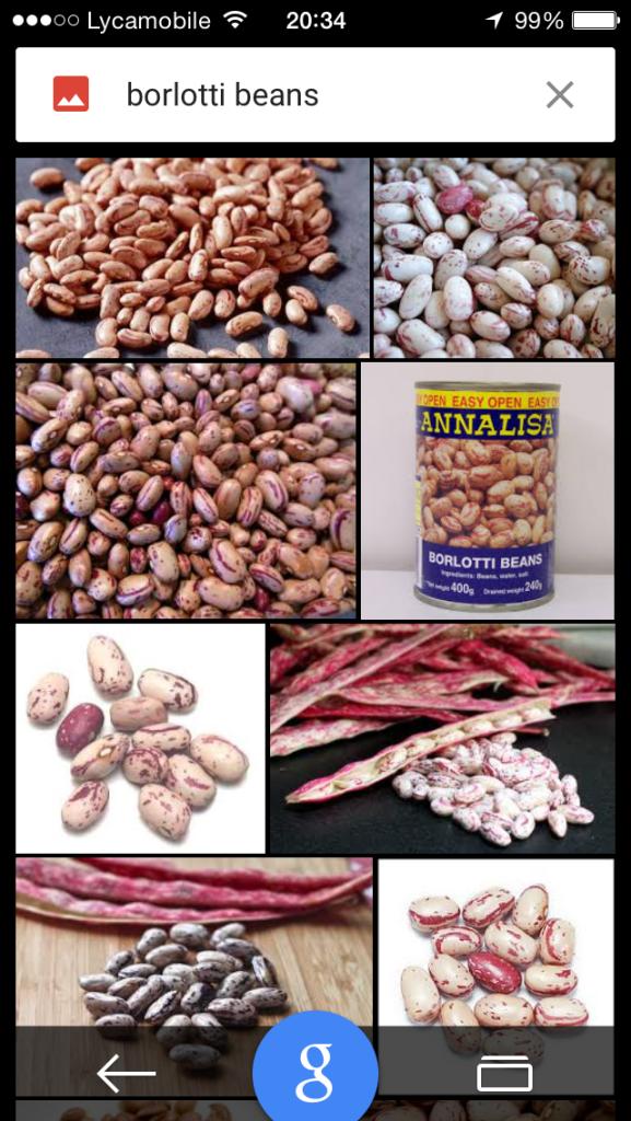 Ohhhh. So these are Borlotti beans?!