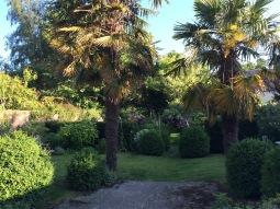 The garden of Rosebud B&B