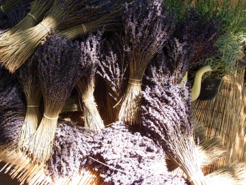 Lavender in bundles at the Arles market